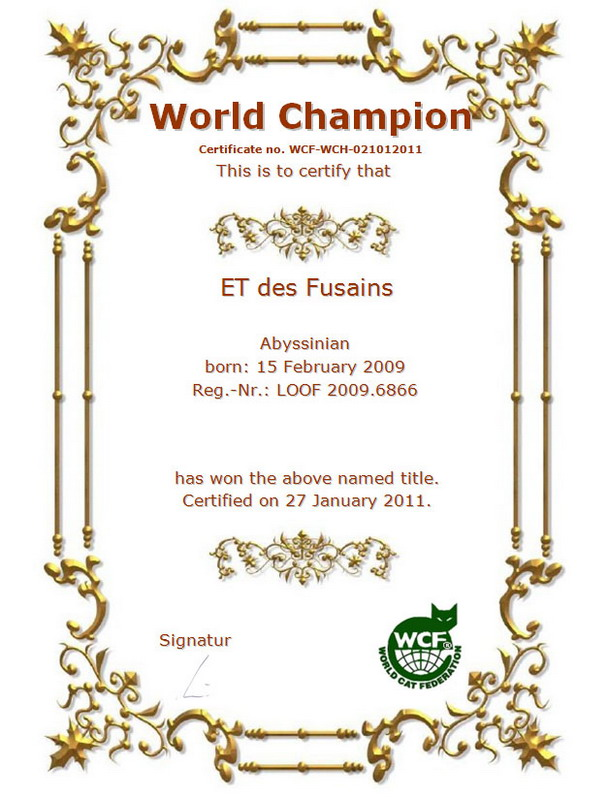 World Champion WCF